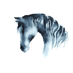 Wet watercolor horse head. Vector.