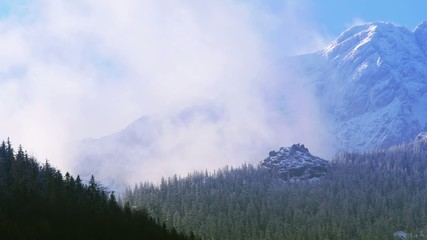 Mountain surrounded by forest and clouds.