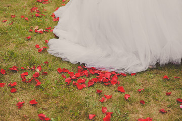 Bridal skirt filled with red rose petals.