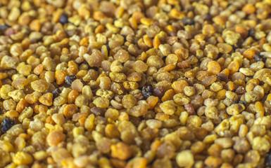 Pollen granules background - macro photo