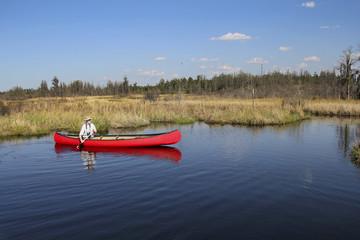 Canoeing in the Okefenokee Swamp -Georgia