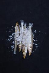 fresh fish in black background