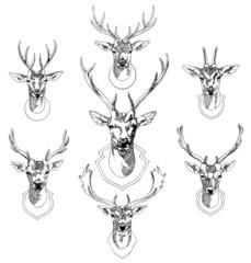 Deers Sketch drawing illustration vector.