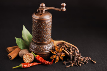 dark still-life with different spices and retro pepper mill