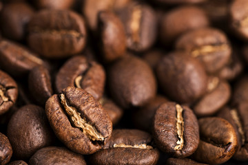 Close-up of medium roasted coffee beans