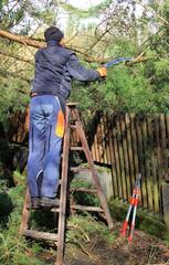 Mann mit Handsäge, Aufräumarbeiten nach Sturmschaden