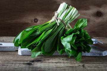 Bunch of fresh spring wild garlic