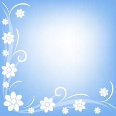 fiorellini bianchi su sfondo azzurro