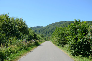 Road in the mountains (Bieszczady in Poland)