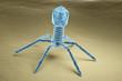Leinwandbild Motiv Bacteriophage virus electron microscopy image