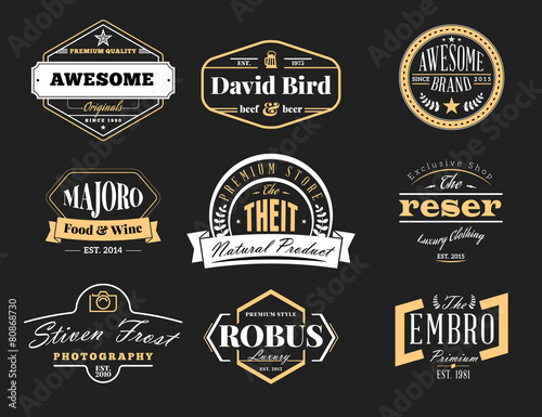 Set of Retro Vintage Badges and Logotypes - 80868730