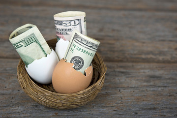 money in egg shells in nest