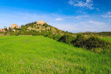 Green field and monastery of Arta village, Majorca island, Spain