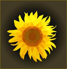 sunflower on dark gradient background