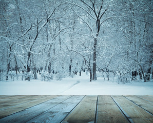 frozen woods and wooden floor
