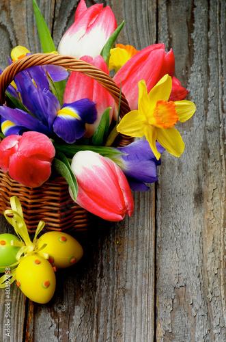 Foto op Canvas Iris Easter Theme