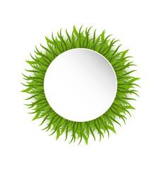 Summer grass circle, go green concept