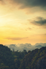 Sunset in the Rainforest in Thailand