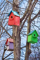 Three bird houses