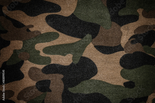Texture of a camouflage - 80899541
