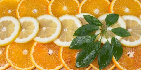 juicy citrus look