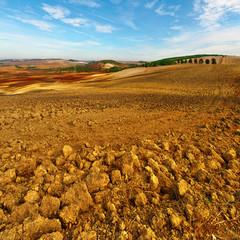 Plowed Hills