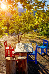Wooden table and seats in garden