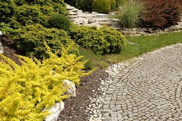 Path in the garden.