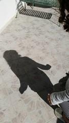 Ombra di bambina che salta