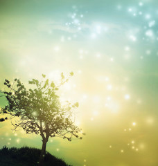 Tree silhouette at twilight