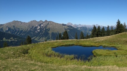Pond and rural landscape, summer scene near Gstaad