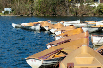 boats with oars on blue water in park at springtime
