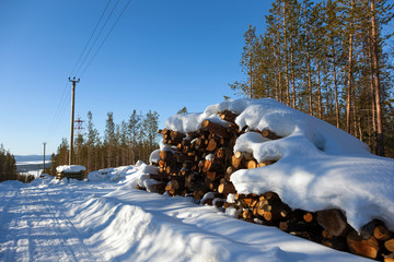 Deforestation in the clearing of power line