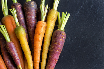 Fresh organic rainbow carrots