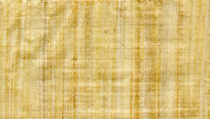 Papyrus type paper texture use as background