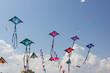Leinwandbild Motiv Kite festival