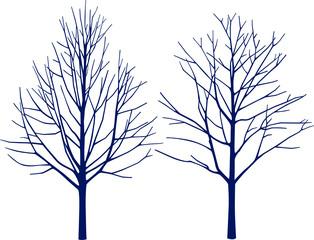 kahle bäume