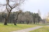 Park005