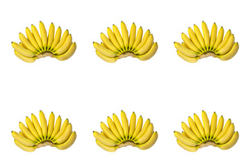 Six Brunches of Yellow Baby Bananas