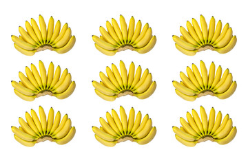 Brunches of Yellow Baby Banana Pattern