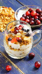 granola with yogurt and candied cranberries, blueberries