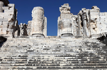 view of Temple of Apollo in antique city of Didyma