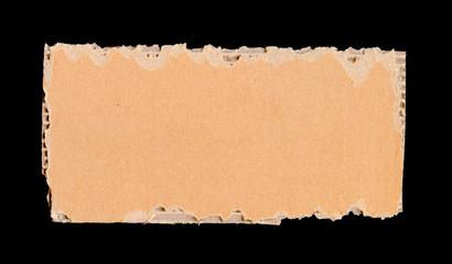 Torn Cardboard Piece
