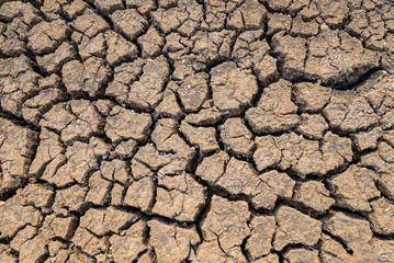 Cracked dry land without water