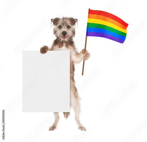 Papiers peints Porter Dog Supporting Gay Rights With Blank Sign