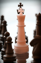 close up of king chess figure surrounded by a number of fallen b