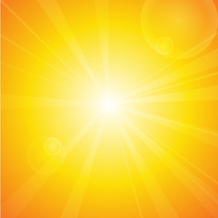 Vector : Summer background with sun and lens flare.