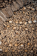 The wall made of human bones and skulls