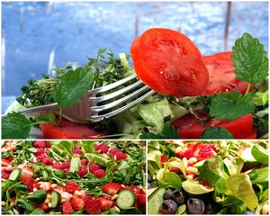 Sommer-Salate