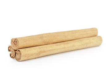 true ceylon cinnamon sticks, isolated